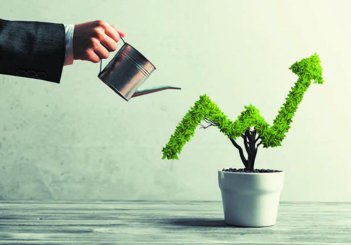 Croissance des cabinets de conseil en gestion de patrimoine : Quelles sont les tendances ?